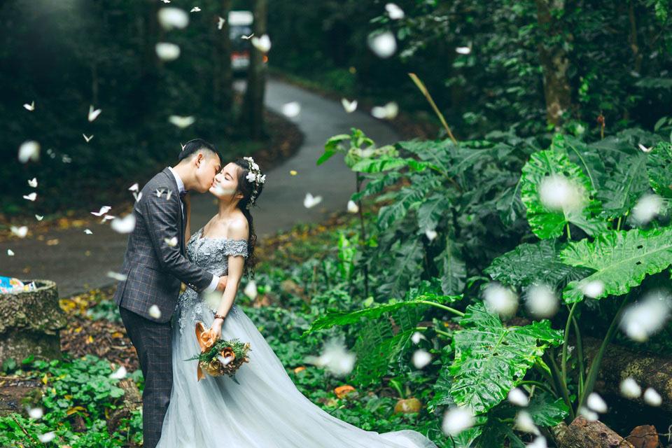 Rừng Cúc Phương với khung cảnh đầy lãng mạn