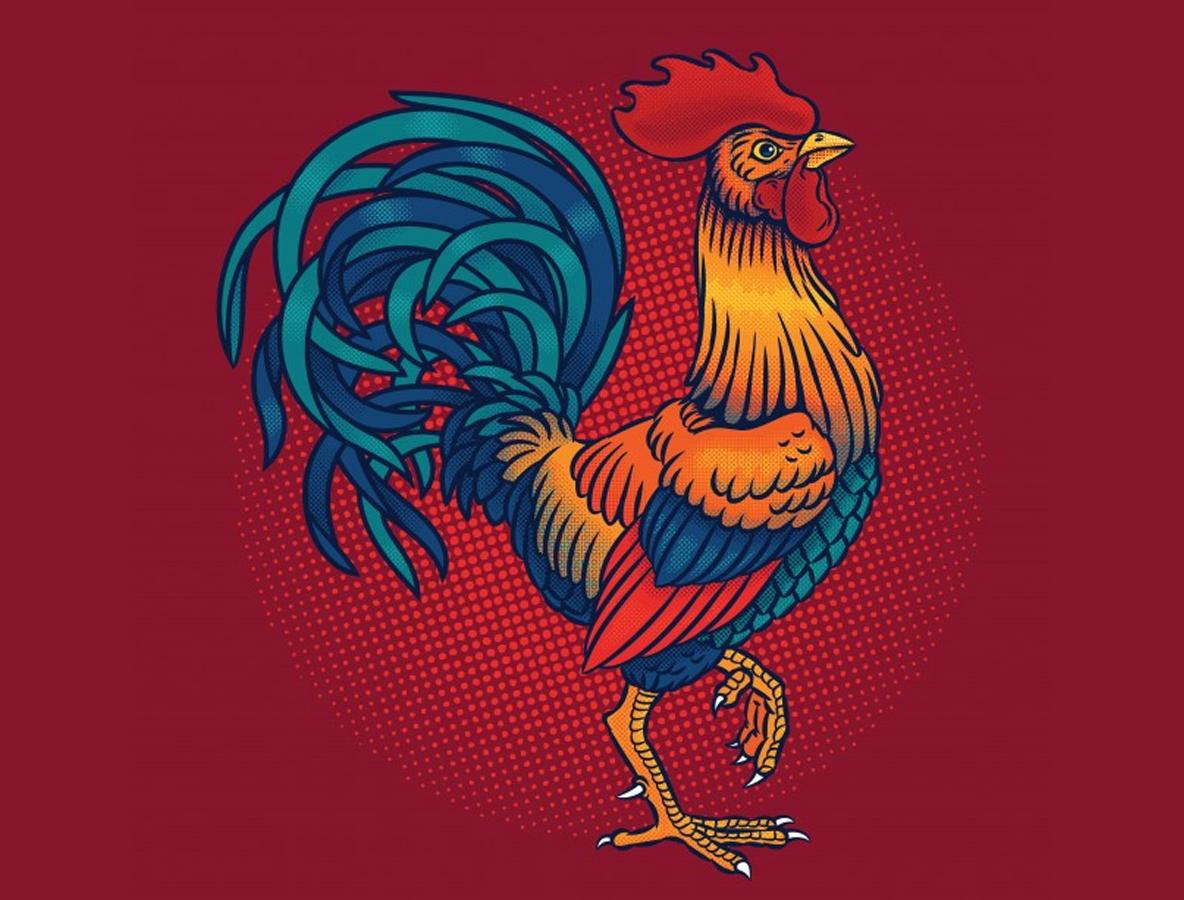 Người cầm tinh con gà có hợp cưới năm nay hay không?